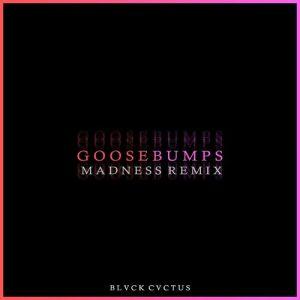 دانلود ریمیکس بیس دار آهنگ Goose Bumps از JVLA