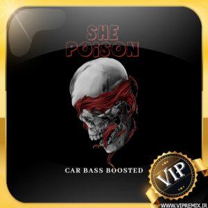 دانلود ریمیکس بیس دار خفن گنگ She Poison مخصوص ماشین