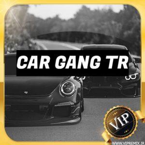 دانلود ریمیکس بیس دار گنگ New Gang مخصوص ماشین