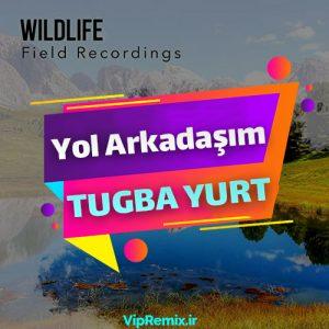 دانلود آهنگ آکوستیک Yol Arkadaşım از Tuğba Yurt