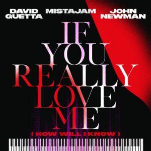 دانلود آهنگ If You Really Love Me از David Guetta
