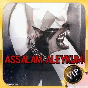 دانلود ریمیکس بیس دار گنگ Assalam Aleykum مخصوص سیستم